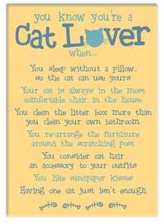 =^..^= one cat is good enough when you have worlds best cat! ❤