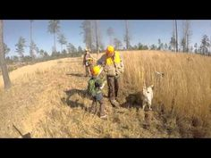 Quail hunt 2015-16 season - YouTube