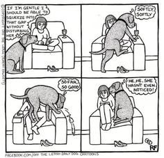 """My dogs. -- """"squeezin' in"""" :-D"""