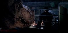 Check out all the awesome trex gifs on WiffleGif. Including all the steven spielberg gifs, film gifs, and jurassic park gifs. Jurassic Park T Rex, Jurassic Park Series, Jurassic World, Joe Johnston, The Lost World, Falling Kingdoms, Steven Spielberg, Image