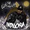 The Underachievers - Indigoism   - Free Mixtape Download or Stream it