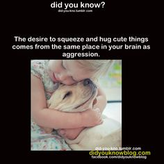 """This frightens me... like.. """"I'm gonna cuddle you.. to death"""""""