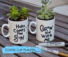 TexMex Crafting: Coffee Cup Planter
