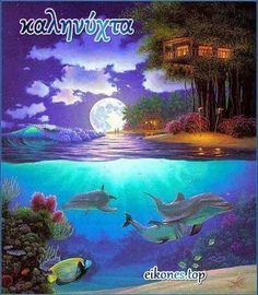 Διάλεξε την καληνύχτα που σου αρέσει ανάμεσα σε 170 περίπου εικόνες - eikones top Good Morning Good Night, Aquarium, Pets, Photography, Animals, Goldfish Bowl, Photograph, Animales, Animaux