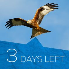 Just 3 days left to #defendnature! Please add your voice & make a difference.