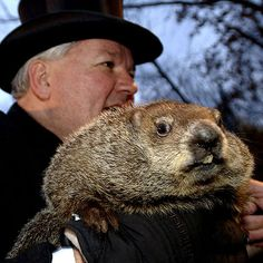 Each Groundhog Day, Punxsutawney Phil predicts the long-term forecast. Our weathermen do it, too, but is it even worth bothering about?