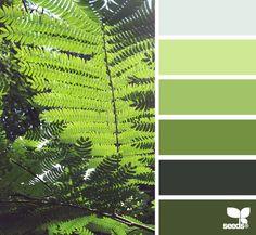 Fern Hues - http://design-seeds.com/index.php/home/entry/fern-hues