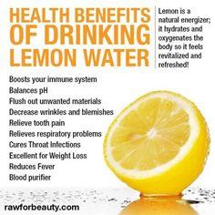 benefits of drinking lemon water rawforbeauty - Google Search