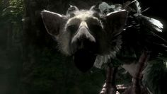 When The Last Guardian gets flaky you get a chance to appreciate how good it really is