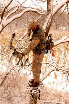 Understanding Compound Bows (bowhunting.com)  Nice article on how compound bows work and how they differ.