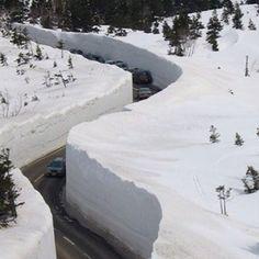 Valdez, Alaska. Crazy snow