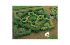 Knot-garden: An invention of medieval English gardeners who liked to weave low-growing herbs or boxwood hedging into elaborate, knot-like geometric patterns. Click the link below for an A-Z guide to gardening terms.