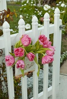 shabby chic white fences and pink flowers  = awwwwww!