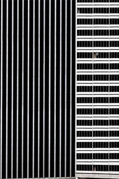 TOWER BLOCK LINES   NIV ROZENBERG — Patternity