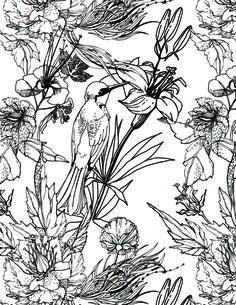 Nature sauvage fleurs et oiseau à colorier