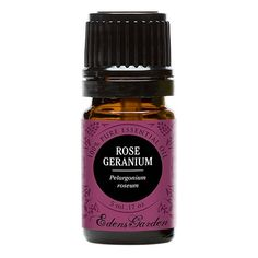 Did you know that rose geranium oil prevents ticks from detecting your presence? Learn how to make a natural tick repellent with rose geranium oil!