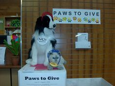"""Paws to Give a donation of pet supplies for OC Animal Care!  Summer Reading Program 2014 """"Paws to Read!"""" at Irvine University Park Library."""