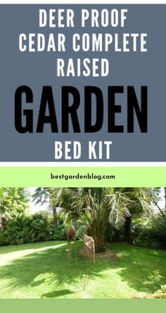Learn more about Check This OUT: Great idea for a garden Click the link for Raised Garden Beds, Garden Design, Garden Ideas, Gardening, Link, Check, Lawn And Garden, Landscape Designs, Landscaping Ideas