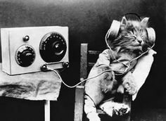 Tibby enjoys a radio program. Photographed by Hulton-Deutsch, February1,1926.