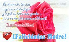 Una Rosa roja para decirle a mi Madre cuanto la quiero. #DiaMadre