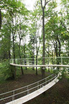 Un camino en el bosque / Transsolar & Tetsuo Kondo Architects