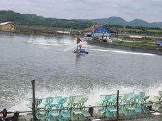 Hot Topics   Vietnam Aquaculture Network - Mạng Thủy sản Việt Nam