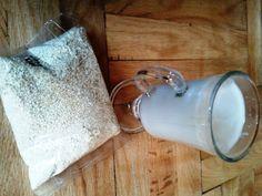 Szezámtej Egg Replacement, Mason Jar Lamp, Dairy, Drinks, Drinking, Beverages, Drink, Beverage