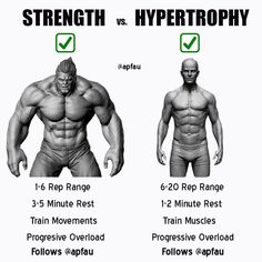 Need help with setting up your diet and routine for your goals?-Generally, lower reps are for strength and higher reps are for hypertrophy (size). However, most of us are trying to get bigger and stronger. We have put the best workout i Weight Training Workouts, Gym Workout Tips, Biceps Workout, Workout Schedule, Fun Workouts, Workout Bodyweight, Weekly Workout Plans, Workout Men, Tips Fitness