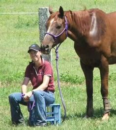 Please note that the following information is strictly from my own experience. I am not a professional trainer. I did however, break in my Tennessee Walking Horse mare using these steps. First off, you want to build a bond with your horse. I...