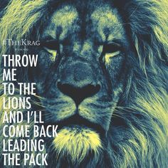 BE #theleader Everyday! Its better to be #thelion, #theking of #beast. #stop being led, start #leading others!   #TheKrag #quote #fashion #lion