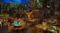 Swing on into the Rainforest Cafe® at Downtown Disney Marketplace, a jungle-themed family restaurant teeming with animated animals, rainy sound effects, schools of brightly colored fish and a menu that'll satisfy creatures big and small.