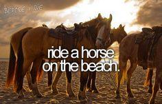 preferably white or black horse at sunset :)