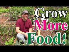 How We're Growing More Food this Year than Ever Before! (Cool trellis shelves for more growing... Deb)