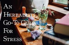 An Herbalists Go-To Guide for Stress | Herbal allies and formulas to help counter the effects of stress and support the body with nervines and adaptogens | Ginger Tonic Botanicals