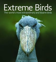 Extreme Birds The Worlds Most Extraordinary and Bizarre Birds by Dominic Couzens #Books #Birds