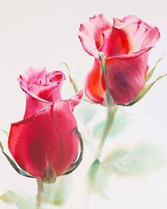 Watercolor illustrations 🎨 (@watercolor.illustrations) • Фото и видео в Instagram