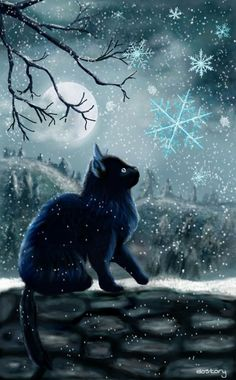 My second entry for the Weekly Drawing Project My black cat in the moonlight is back :-) 🔸first pl I Love Cats, Cool Cats, Yule Cat, Magic Cat, Winter Cat, Black Cat Art, Pics Art, Drawing Projects, Cat Cards