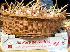 Ail rose de Lautrec (Midi-Pyrénées)