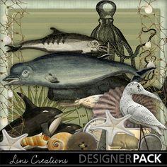 Oceansecrets6 Paint Shop, Easy Install, Photoshop Elements, Photo Book, Digital Scrapbooking, Design Elements, Ocean, Display, Painting