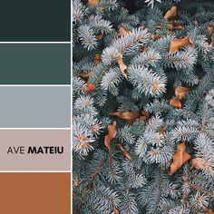 Aspen, United States Color Palette #107 – Ave Mateiu  -  Summer 2020, color palette, color palettes, colour palettes, color scheme, color inspiration, color combination, art tutorial, collage, digital art, canvas painting, wall art, home painting, photography, weddings by color, inspiration, vintage, wallpaper, background, rustic, seasonal, season, natural, nature