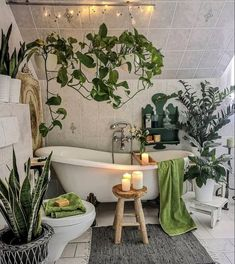 Decor, Aesthetic Room Decor, Interior Plants, Hanging Plants Indoor, Home Decor, Aesthetic Rooms, Interior Design Living Room, Earthy Home Decor, House Plants Decor