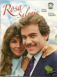 Rosa Salvaje, a very popular soap opera from the 80s in Mexico and spanish speaking parts of the world. The show had everything, Love, hate, poverty, rich snobby people, good and bad fashion (its the 80s rememeber LOL), sexy hunk Guillermo Capetillo back in the day ! Love this show !