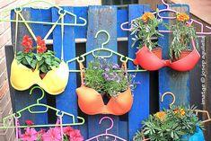 85 Ideas De Arte   Maceteros De Botellas, Macetas Con Garden Yard Ideas, Diy Garden Projects, Diy Garden Decor, Garden Crafts, Garden Pots, Easy Garden, Recycled Decor, Different Kinds Of Flowers, Pot Jardin