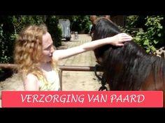 Paardrijden - Verzorging van je paard of pony - YouTube