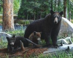 New Discoveries, Wildlife bear art by Kevin Daniel.