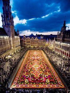 The carpet of flowers @ Brussels, Belgium