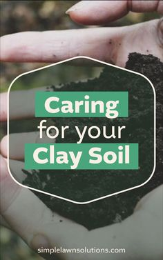 There's more to a great lawn than meets the eye. Clay soil doesn't have to be complicated - though there are a few cons, there are several benefits to this type of soil. You can't always pick your land, but you can choose how you care for it. Understanding how to properly care for your clay soil will aid in growing thriving, green grass. #greengrass