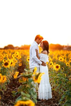 Amor no campo de girassol em Holambra-SP. Casal no ensaio de noivos para o casamento. Sunflowers field at sunset. Engagement Photo Poses, Engagement Pictures, Engagement Photography, Wedding Pictures, Wedding Photography, Engagement Shoots, Country Engagement, Hair Pictures, Couple Photography