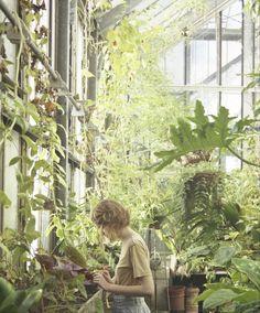 Green House - http://garden-greenhouse.se/