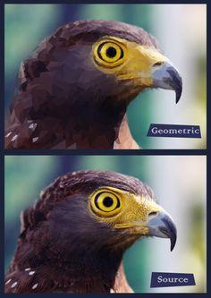 #Geometric #eagle #design